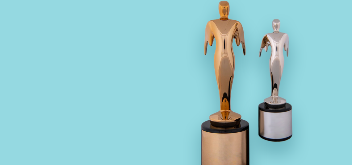 image for article We Won Two Telly Awards!